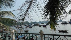 Cat Ba Harbour